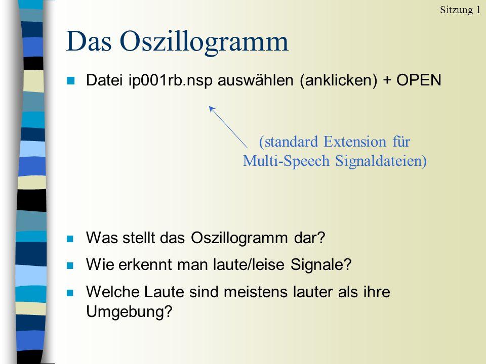 Das Oszillogramm n Datei ip001rb.nsp auswählen (anklicken) + OPEN Sitzung 1 n Was stellt das Oszillogramm dar? n Wie erkennt man laute/leise Signale?