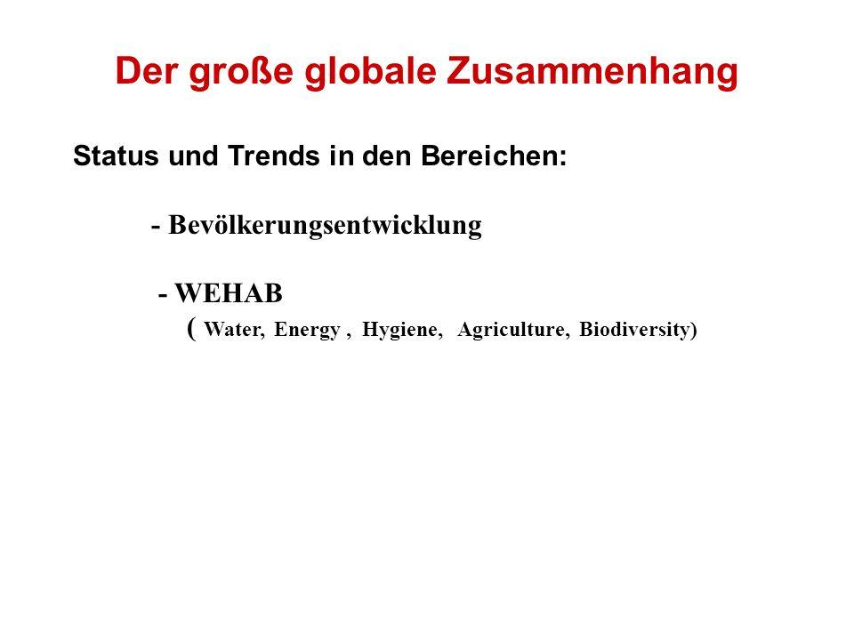 Der große globale Zusammenhang Status und Trends in den Bereichen: - Bevölkerungsentwicklung - WEHAB ( Water, Energy, Hygiene, Agriculture, Biodiversity)