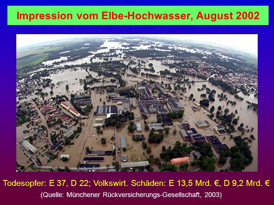 Impression vom Elbe-Hochwasser, August 2002 Todesopfer: E 37, D 22; Volkswirt. Schäden: E 13,5 Mrd., D 9,2 Mrd. (Quelle: Münchener Rückversicherungs-G