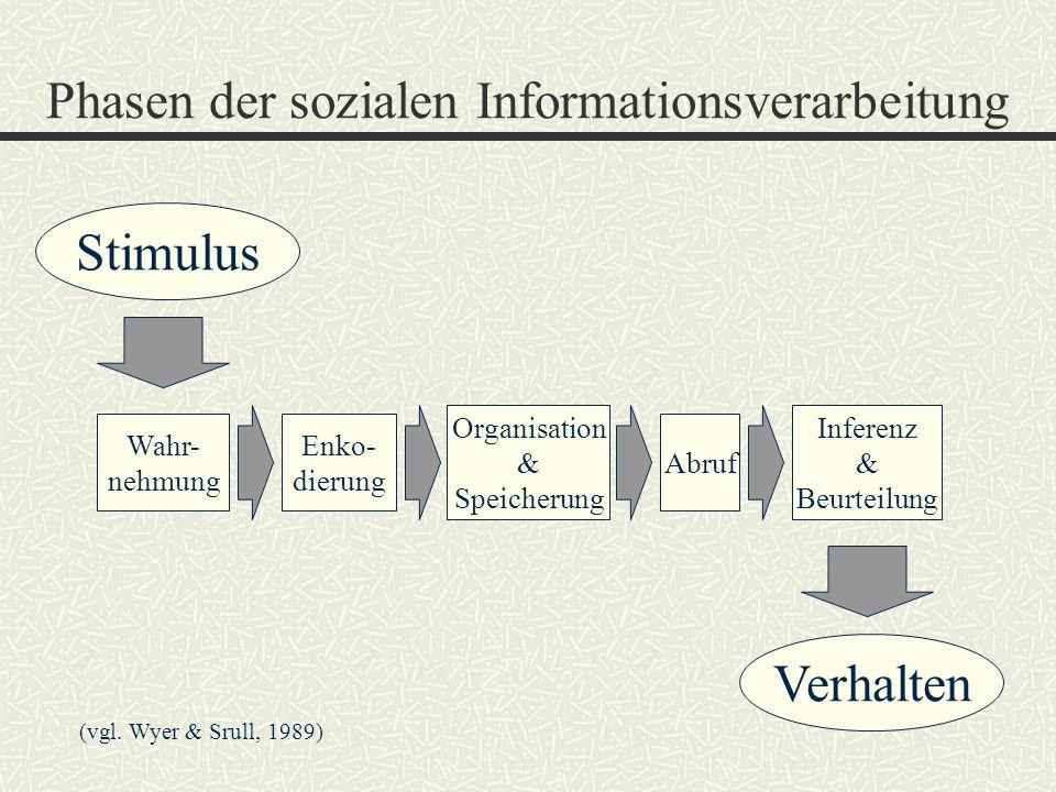Literatur: 9.Markus, H.& Zajonc, R.B. (1985). The cognitive perspective in social psychology.