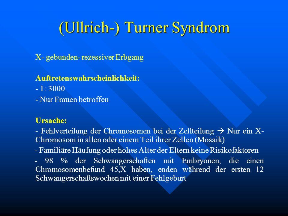 (Ullrich-) Turner Syndrom X- gebunden- rezessiver Erbgang Auftretenswahrscheinlichkeit: - 1: 3000 - Nur Frauen betroffen Ursache: - Fehlverteilung der