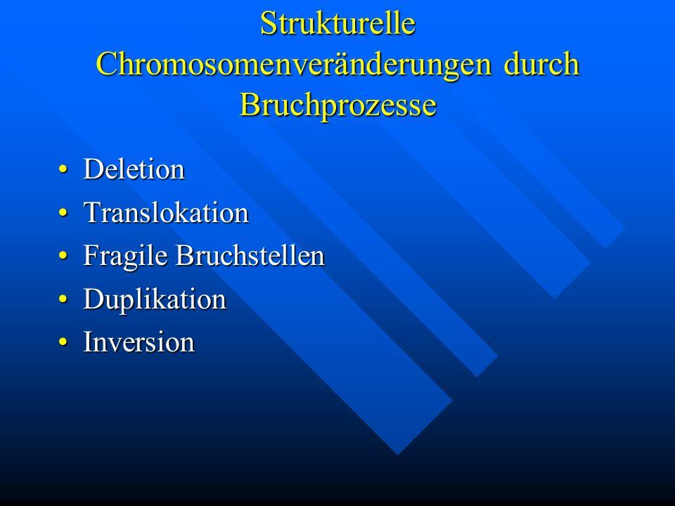 Strukturelle Chromosomenveränderungen durch Bruchprozesse DeletionDeletion TranslokationTranslokation Fragile BruchstellenFragile Bruchstellen Duplika