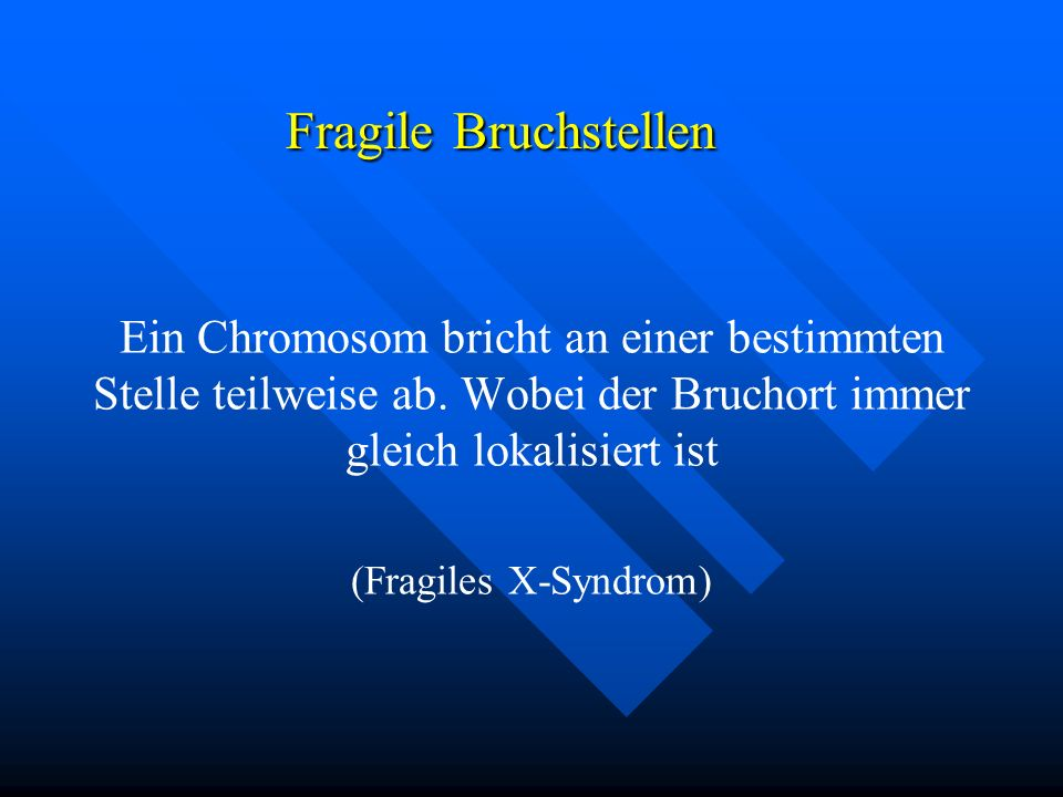 Ein Chromosom bricht an einer bestimmten Stelle teilweise ab. Wobei der Bruchort immer gleich lokalisiert ist (Fragiles X-Syndrom) Fragile Bruchstelle