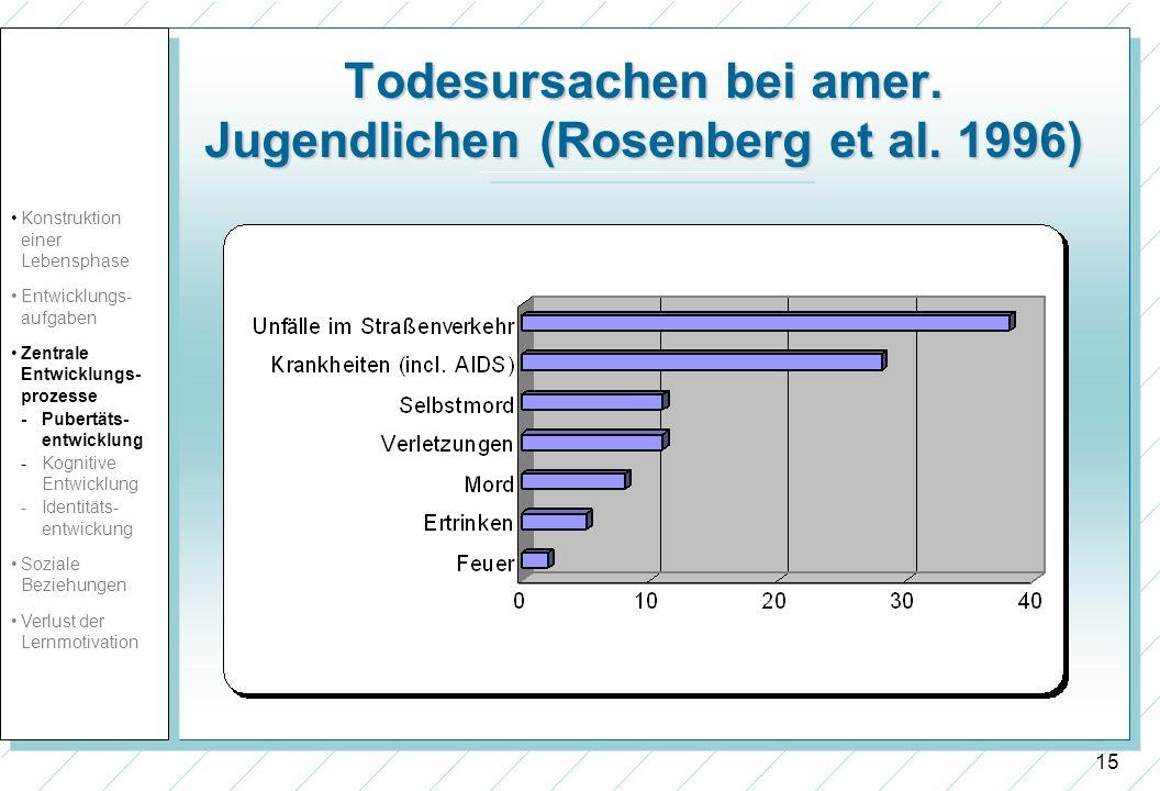 15 Todesursachen bei amer. Jugendlichen (Rosenberg et al. 1996) Konstruktion einer Lebensphase Entwicklungs- aufgaben Zentrale Entwicklungs- prozesse
