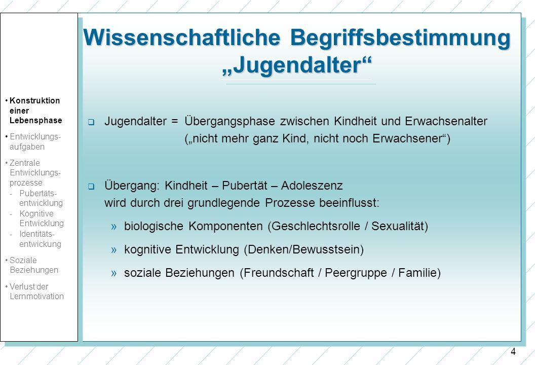 15 Todesursachen bei amer.Jugendlichen (Rosenberg et al.