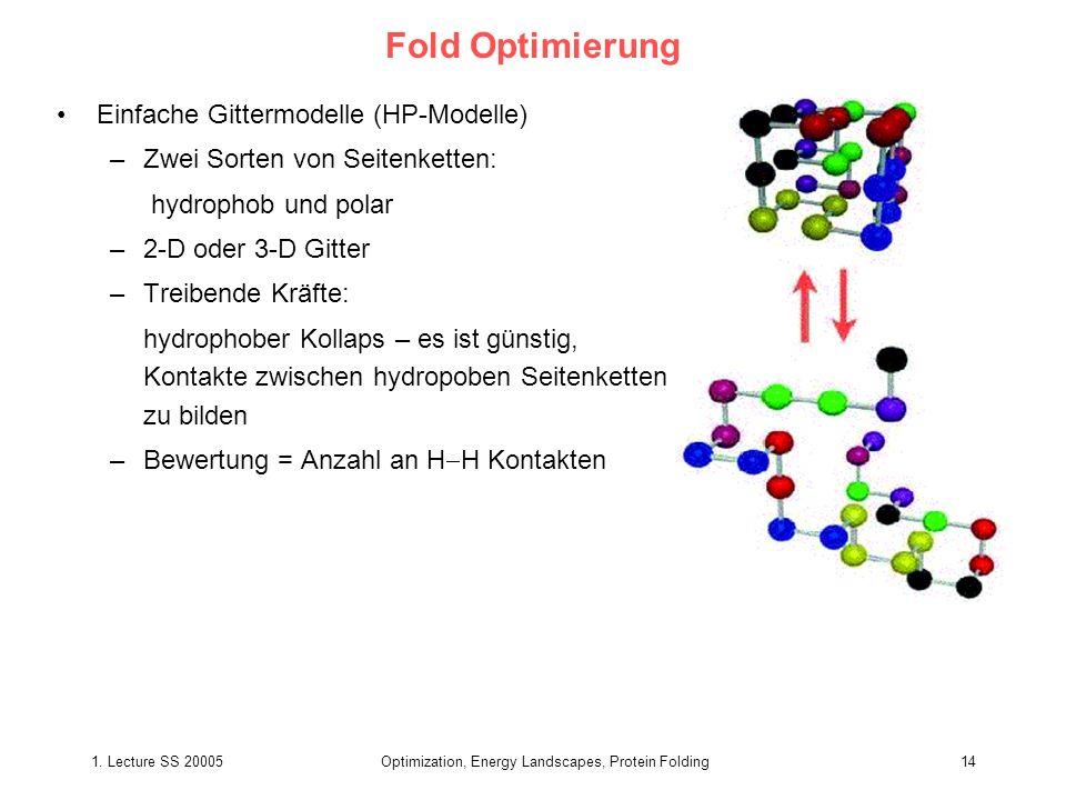 1. Lecture SS 20005Optimization, Energy Landscapes, Protein Folding14 Fold Optimierung Einfache Gittermodelle (HP-Modelle) –Zwei Sorten von Seitenkett
