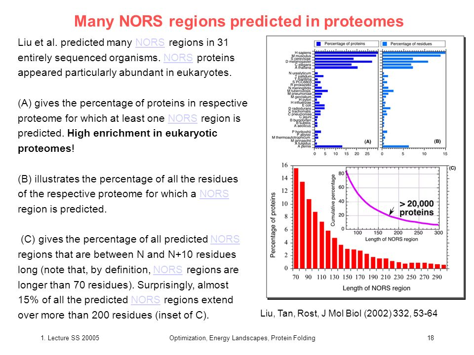 1. Lecture SS 20005Optimization, Energy Landscapes, Protein Folding18 Many NORS regions predicted in proteomes Liu et al. predicted many NORS regions