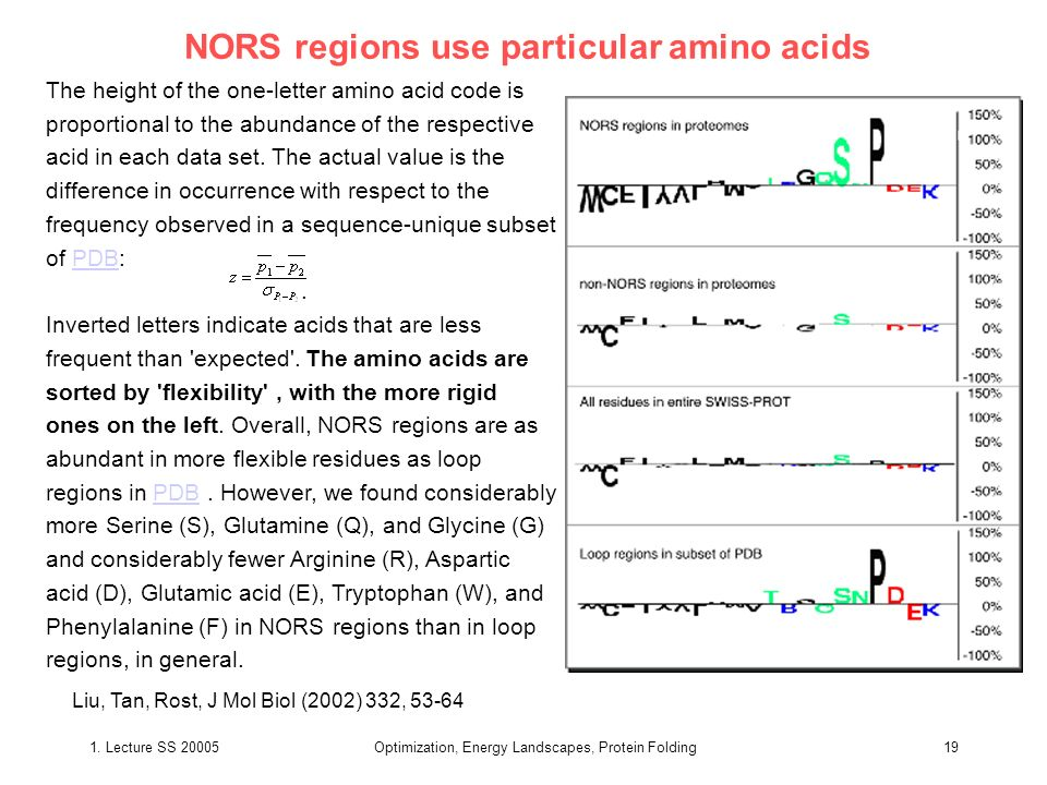 1. Lecture SS 20005Optimization, Energy Landscapes, Protein Folding19 NORS regions use particular amino acids The height of the one-letter amino acid