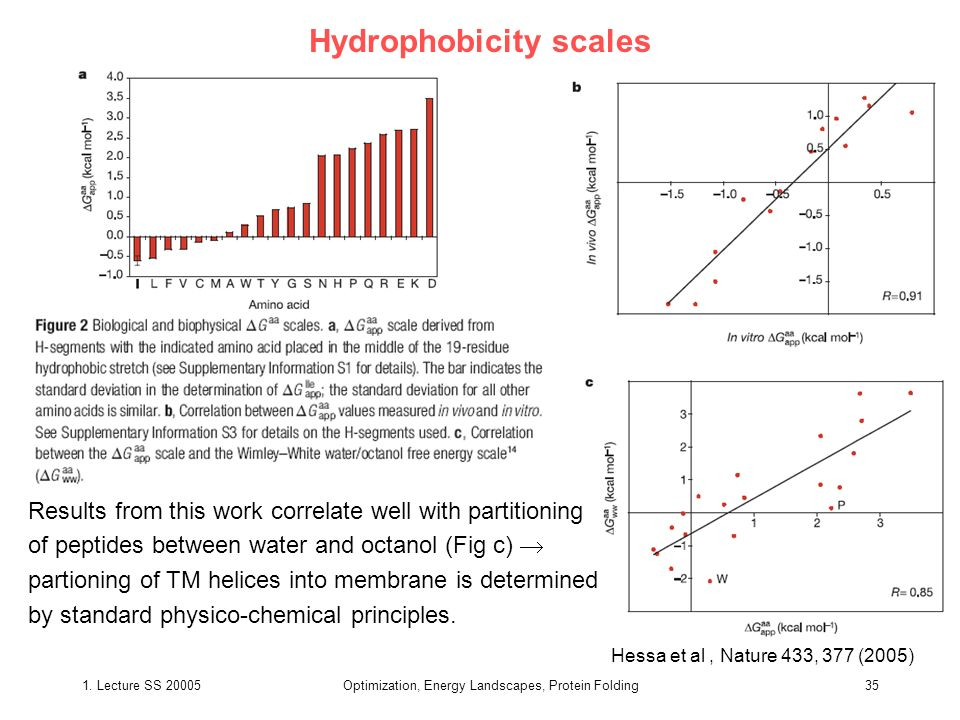 1. Lecture SS 20005Optimization, Energy Landscapes, Protein Folding35 Hydrophobicity scales Hessa et al, Nature 433, 377 (2005) Results from this work
