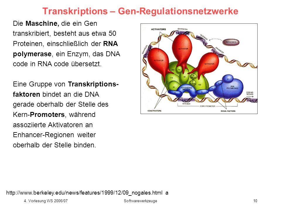 4. Vorlesung WS 2006/07Softwarewerkzeuge10 Transkriptions – Gen-Regulationsnetzwerke Die Maschine, die ein Gen transkribiert, besteht aus etwa 50 Prot