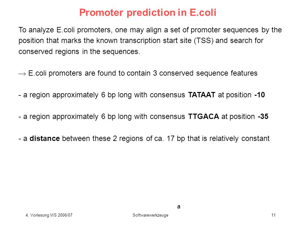 4. Vorlesung WS 2006/07Softwarewerkzeuge11 Promoter prediction in E.coli To analyze E.coli promoters, one may align a set of promoter sequences by the
