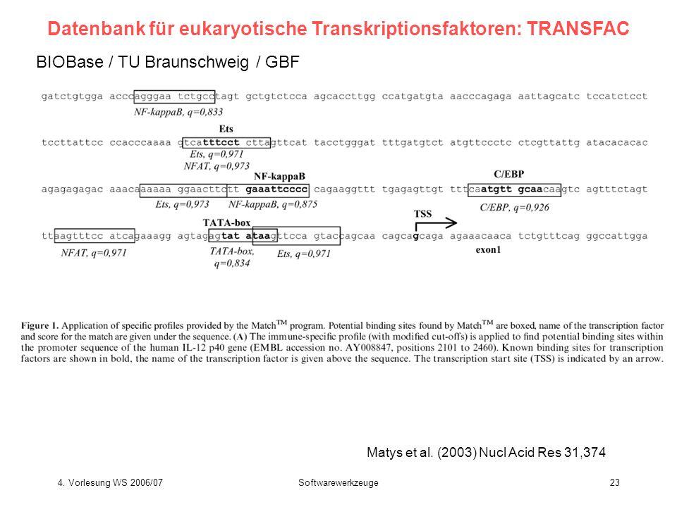 4. Vorlesung WS 2006/07Softwarewerkzeuge23 BIOBase / TU Braunschweig / GBF Matys et al. (2003) Nucl Acid Res 31,374 Datenbank für eukaryotische Transk