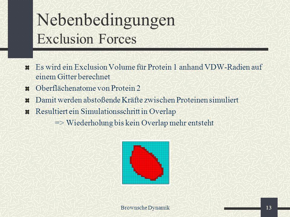 Brownsche Dynamik13 Nebenbedingungen Exclusion Forces Es wird ein Exclusion Volume für Protein 1 anhand VDW-Radien auf einem Gitter berechnet Oberfläc