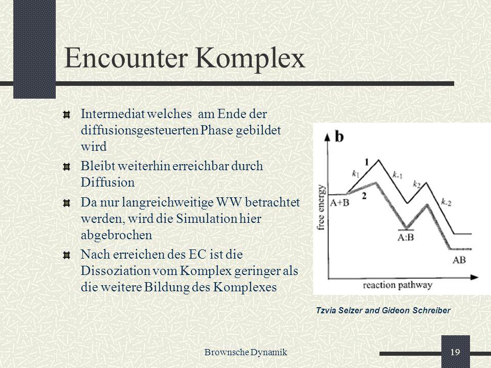 Brownsche Dynamik19 Encounter Komplex Intermediat welches am Ende der diffusionsgesteuerten Phase gebildet wird Bleibt weiterhin erreichbar durch Diff