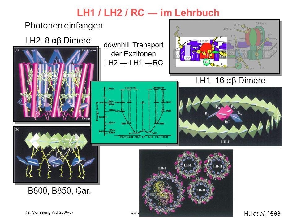 12. Vorlesung WS 2006/07Softwarewerkzeuge10 LH1 / LH2 / RC im Lehrbuch Photonen einfangen Hu et al, 1998 B800, B850, Car. LH2: 8 αβ Dimere LH1: 16 αβ