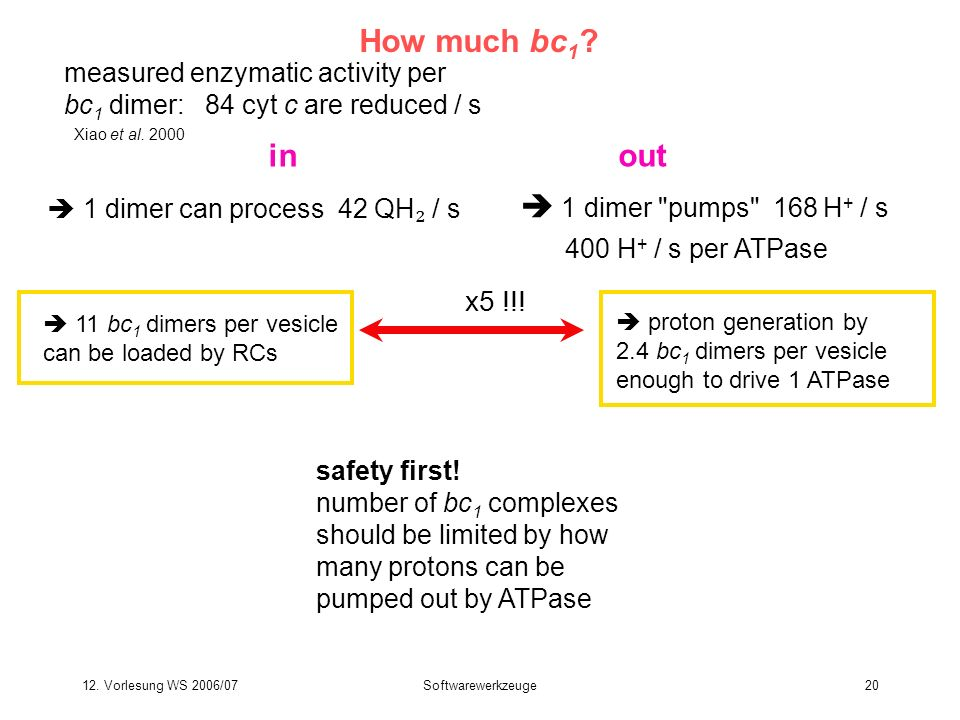 12. Vorlesung WS 2006/07Softwarewerkzeuge20 How much bc 1 ? measured enzymatic activity per bc 1 dimer: 84 cyt c are reduced / s 400 H + / s per ATPas