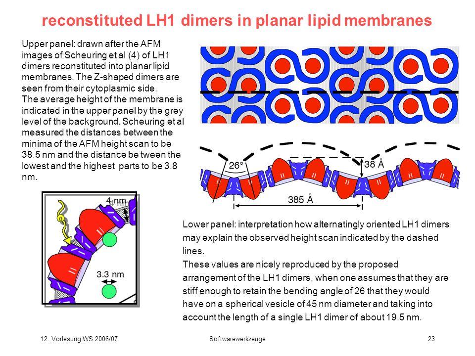 12. Vorlesung WS 2006/07Softwarewerkzeuge23 reconstituted LH1 dimers in planar lipid membranes Upper panel: drawn after the AFM images of Scheuring et