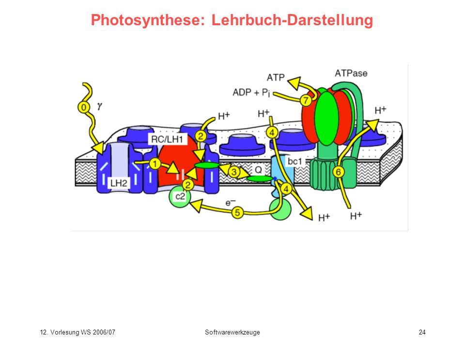 12. Vorlesung WS 2006/07Softwarewerkzeuge24 Photosynthese: Lehrbuch-Darstellung