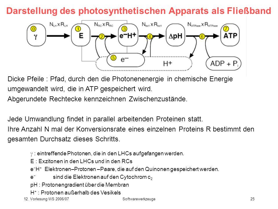 12. Vorlesung WS 2006/07Softwarewerkzeuge25 Darstellung des photosynthetischen Apparats als Fließband Dicke Pfeile : Pfad, durch den die Photonenenerg