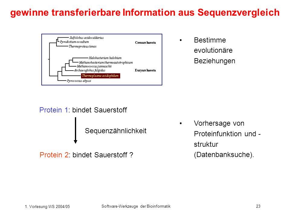 1. Vorlesung WS 2004/05 Software-Werkzeuge der Bioinformatik23 gewinne transferierbare Information aus Sequenzvergleich Bestimme evolutionäre Beziehun