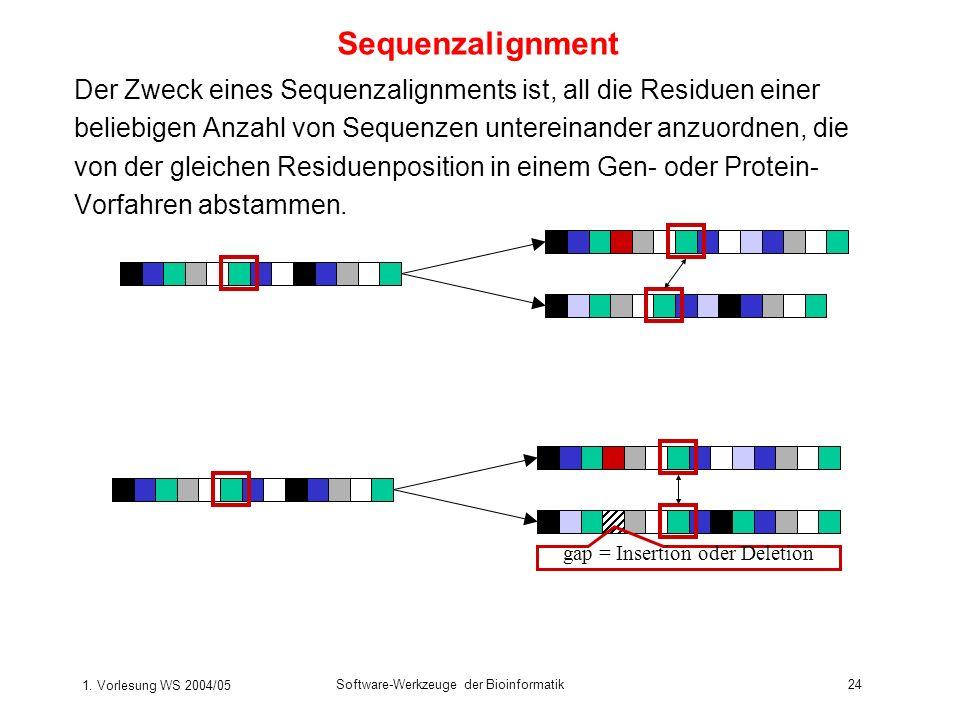 1. Vorlesung WS 2004/05 Software-Werkzeuge der Bioinformatik24 Sequenzalignment Der Zweck eines Sequenzalignments ist, all die Residuen einer beliebig