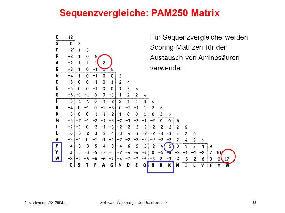 1. Vorlesung WS 2004/05 Software-Werkzeuge der Bioinformatik30 Sequenzvergleiche: PAM250 Matrix Für Sequenzvergleiche werden Scoring-Matrizen für den
