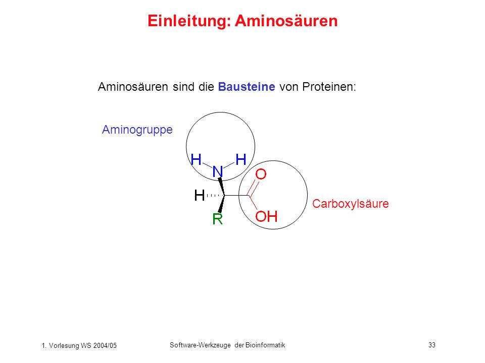 1. Vorlesung WS 2004/05 Software-Werkzeuge der Bioinformatik33 Einleitung: Aminosäuren Aminosäuren sind die Bausteine von Proteinen: Carboxylsäure Ami