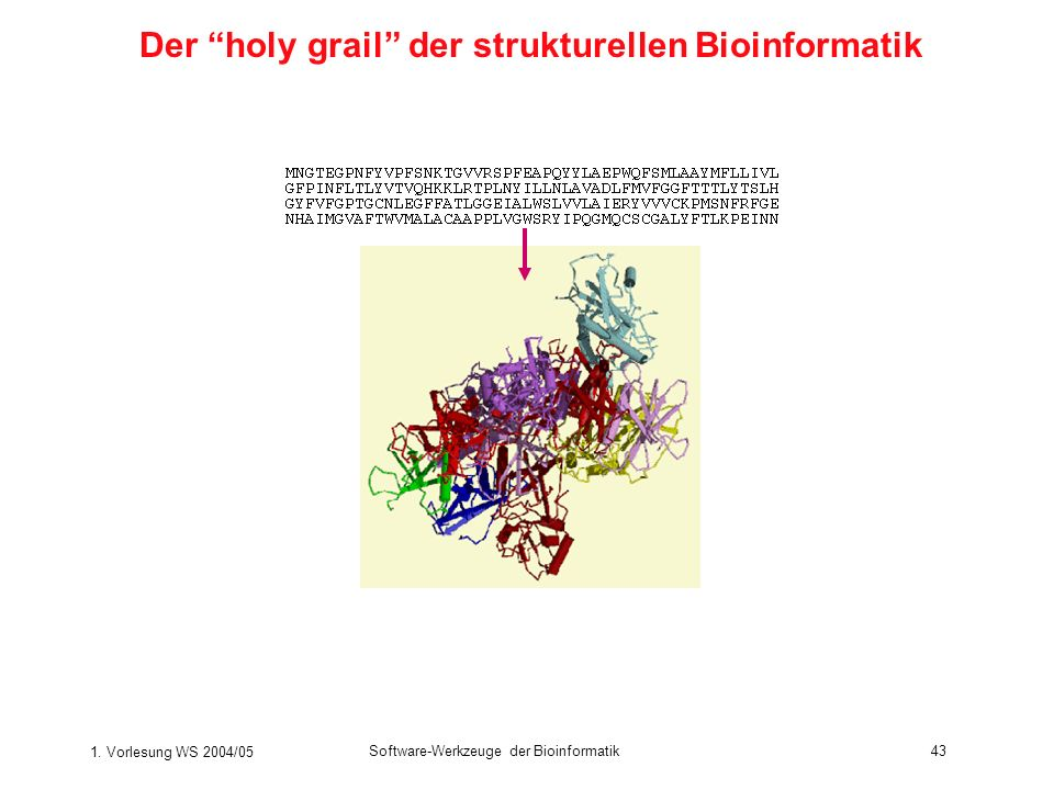 1. Vorlesung WS 2004/05 Software-Werkzeuge der Bioinformatik43 Der holy grail der strukturellen Bioinformatik
