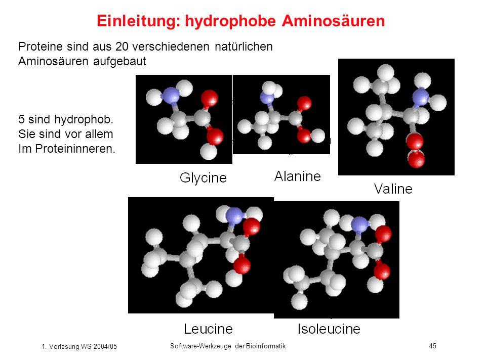 1. Vorlesung WS 2004/05 Software-Werkzeuge der Bioinformatik45 Proteine sind aus 20 verschiedenen natürlichen Aminosäuren aufgebaut 5 sind hydrophob.
