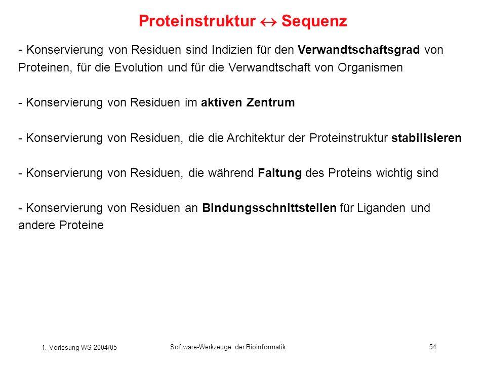 1. Vorlesung WS 2004/05 Software-Werkzeuge der Bioinformatik54 - Konservierung von Residuen sind Indizien für den Verwandtschaftsgrad von Proteinen, f