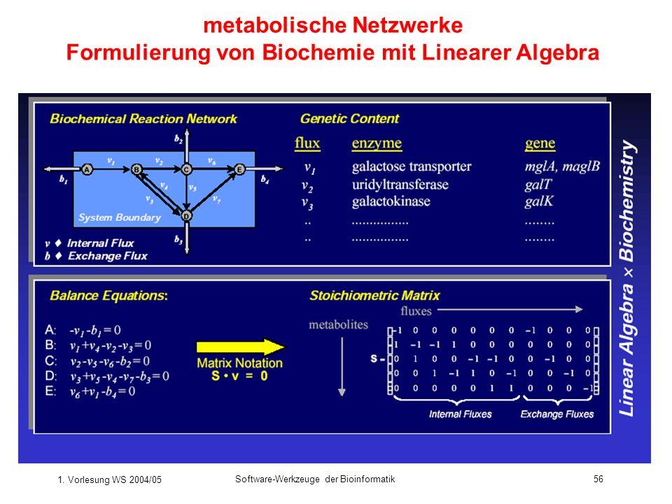 1. Vorlesung WS 2004/05 Software-Werkzeuge der Bioinformatik56 metabolische Netzwerke Formulierung von Biochemie mit Linearer Algebra