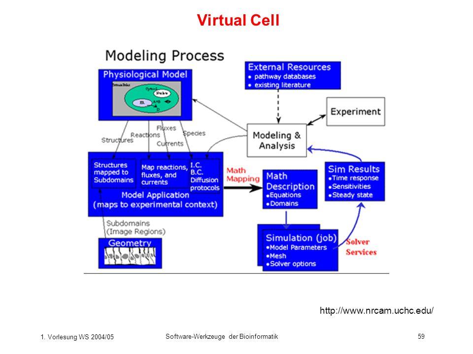 1. Vorlesung WS 2004/05 Software-Werkzeuge der Bioinformatik59 Virtual Cell http://www.nrcam.uchc.edu/