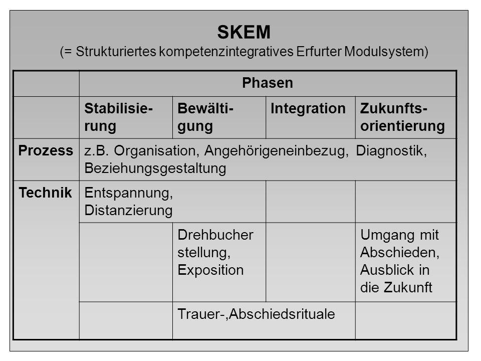 SKEM (= Strukturiertes kompetenzintegratives Erfurter Modulsystem) Phasen Stabilisie- rung Bewälti- gung IntegrationZukunfts- orientierung Prozessz.B.