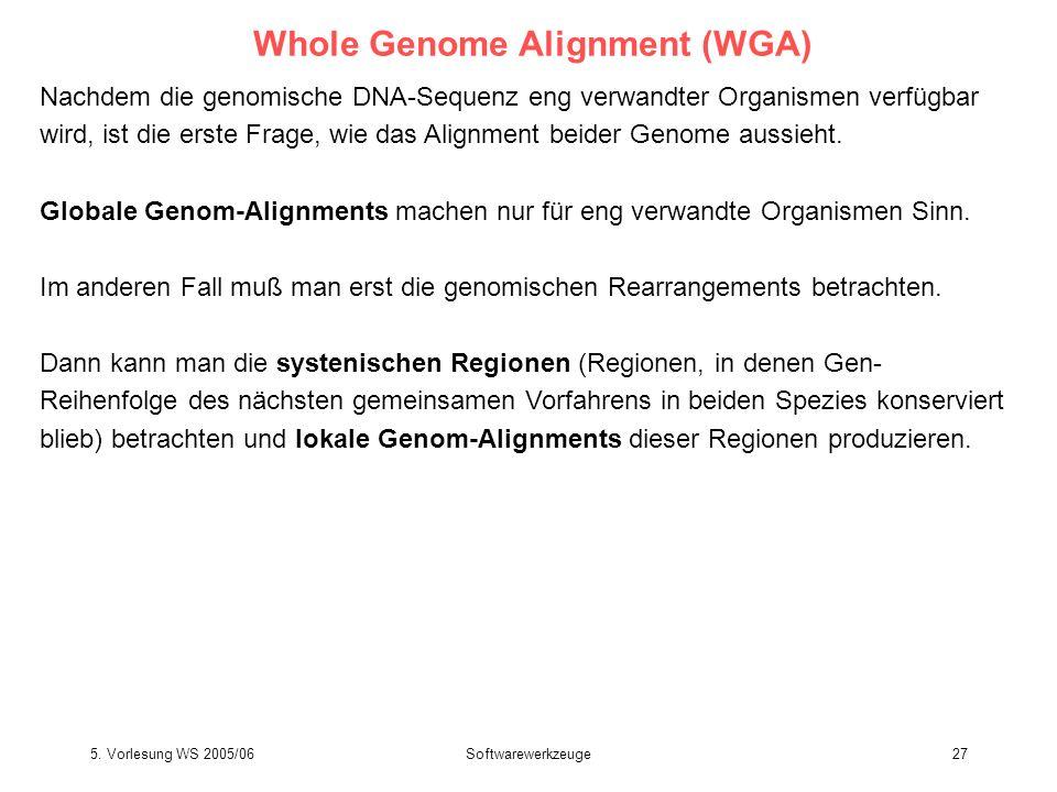 5. Vorlesung WS 2005/06Softwarewerkzeuge27 Whole Genome Alignment (WGA) Nachdem die genomische DNA-Sequenz eng verwandter Organismen verfügbar wird, i