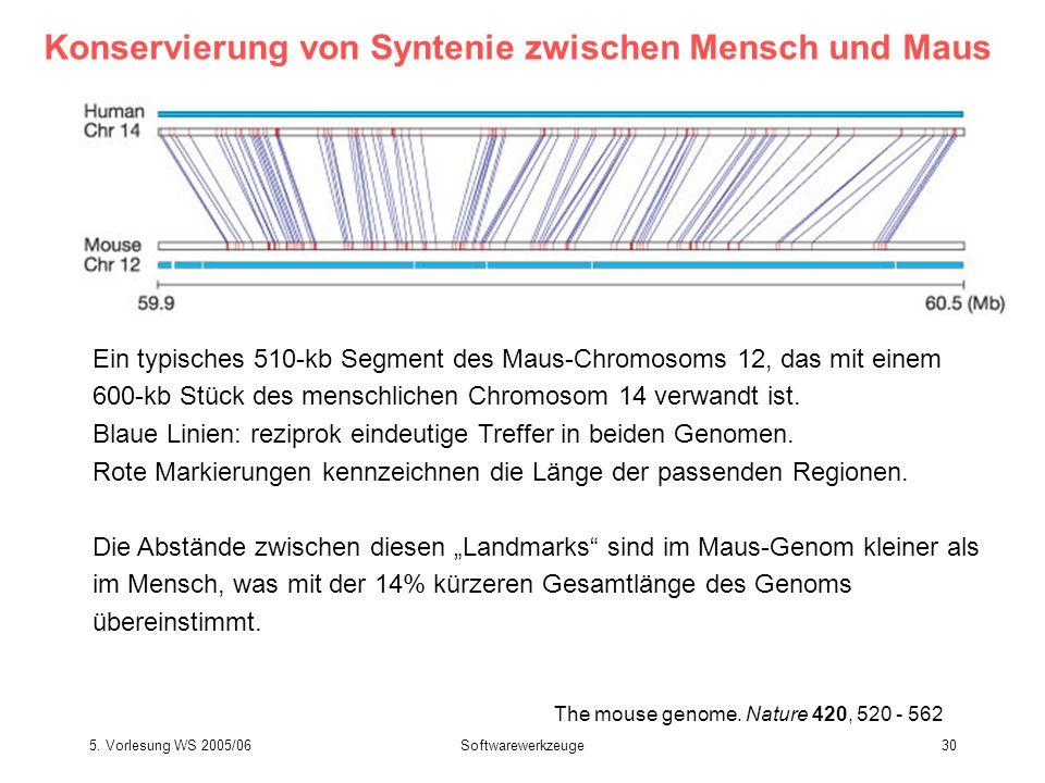 5. Vorlesung WS 2005/06Softwarewerkzeuge30 The mouse genome. Nature 420, 520 - 562 Konservierung von Syntenie zwischen Mensch und Maus Ein typisches 5