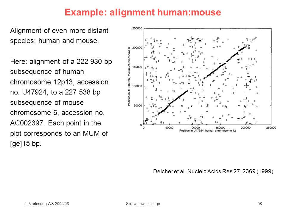 5. Vorlesung WS 2005/06Softwarewerkzeuge58 Example: alignment human:mouse Delcher et al. Nucleic Acids Res 27, 2369 (1999) Alignment of even more dist