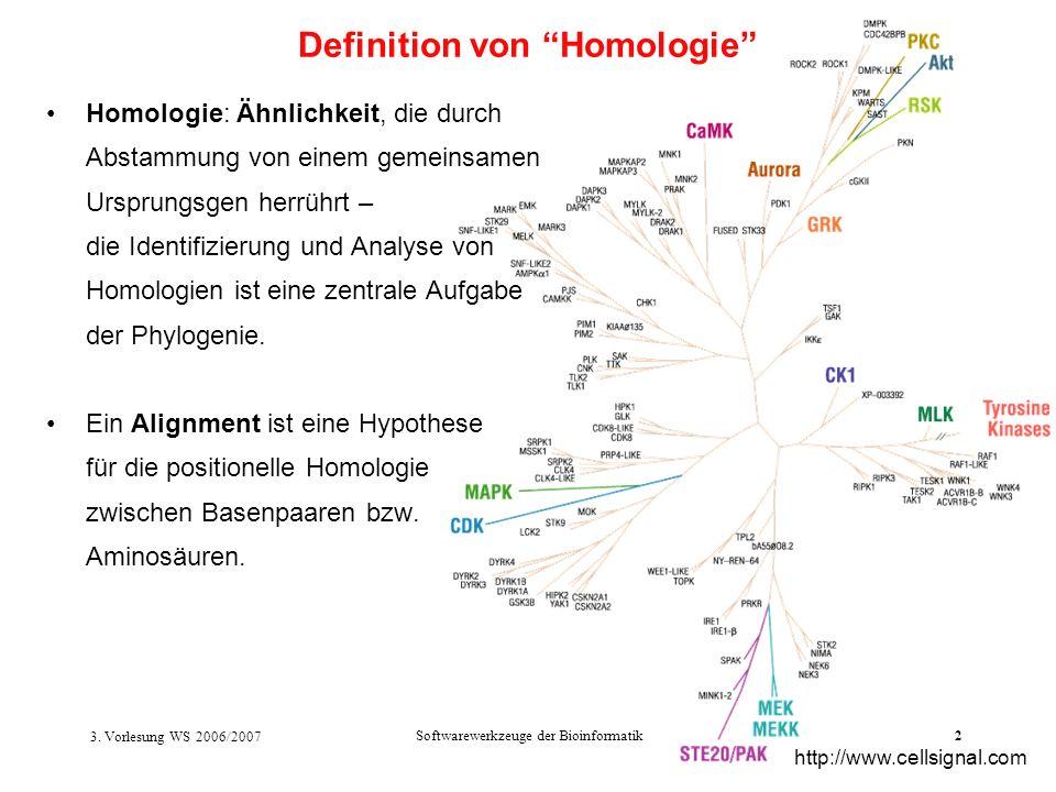 3. Vorlesung WS 2006/2007 Softwarewerkzeuge der Bioinformatik2 Homologie: Ähnlichkeit, die durch Abstammung von einem gemeinsamen Ursprungsgen herrühr