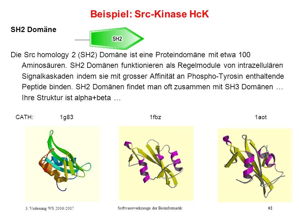 3. Vorlesung WS 2006/2007 Softwarewerkzeuge der Bioinformatik62 SH2 Domäne Die Src homology 2 (SH2) Domäne ist eine Proteindomäne mit etwa 100 Aminosä