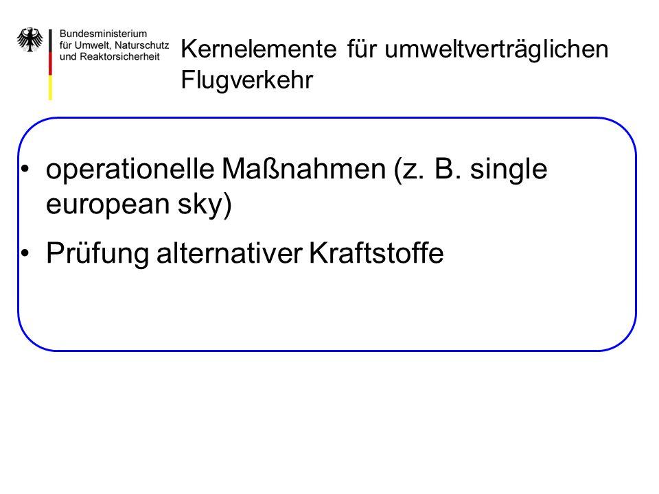 operationelle Maßnahmen (z. B. single european sky) Prüfung alternativer Kraftstoffe Kernelemente für umweltverträglichen Flugverkehr