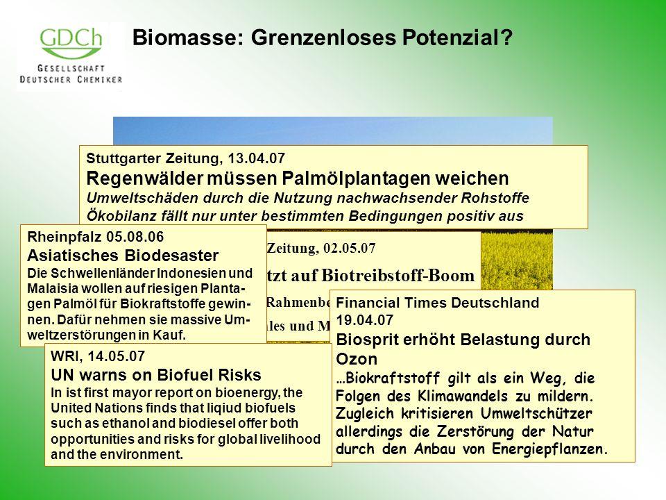 Biomasse: Grenzenloses Potenzial? Stuttgarter Zeitung, 13.04.07 Regenwälder müssen Palmölplantagen weichen Umweltschäden durch die Nutzung nachwachsen