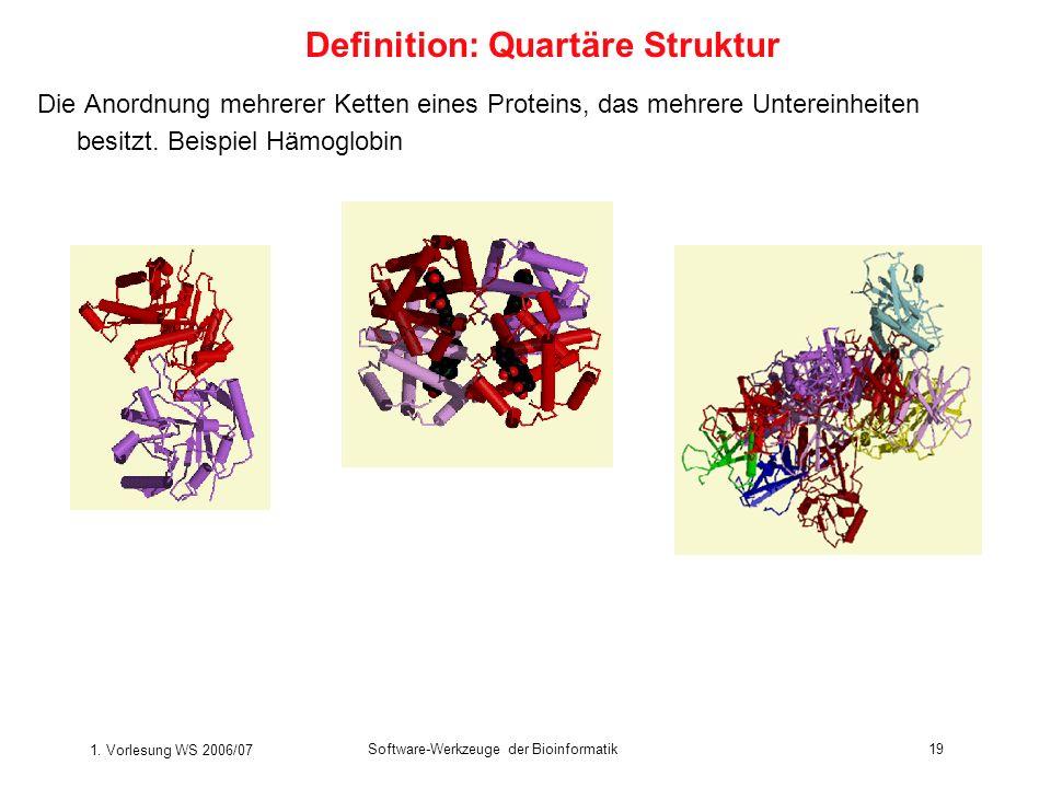 1. Vorlesung WS 2006/07 Software-Werkzeuge der Bioinformatik19 Die Anordnung mehrerer Ketten eines Proteins, das mehrere Untereinheiten besitzt. Beisp