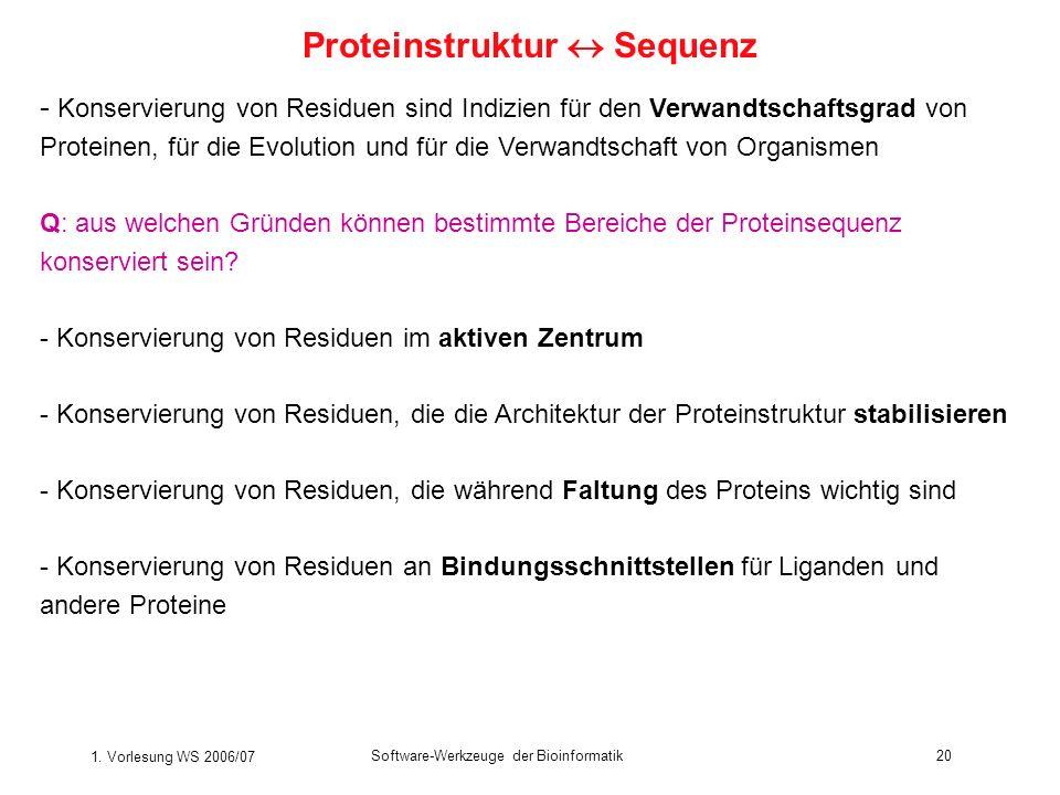 1. Vorlesung WS 2006/07 Software-Werkzeuge der Bioinformatik20 - Konservierung von Residuen sind Indizien für den Verwandtschaftsgrad von Proteinen, f
