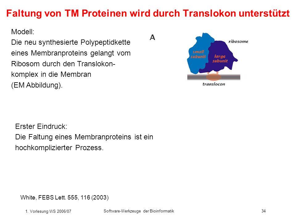 1. Vorlesung WS 2006/07 Software-Werkzeuge der Bioinformatik34 Faltung von TM Proteinen wird durch Translokon unterstützt White, FEBS Lett. 555, 116 (