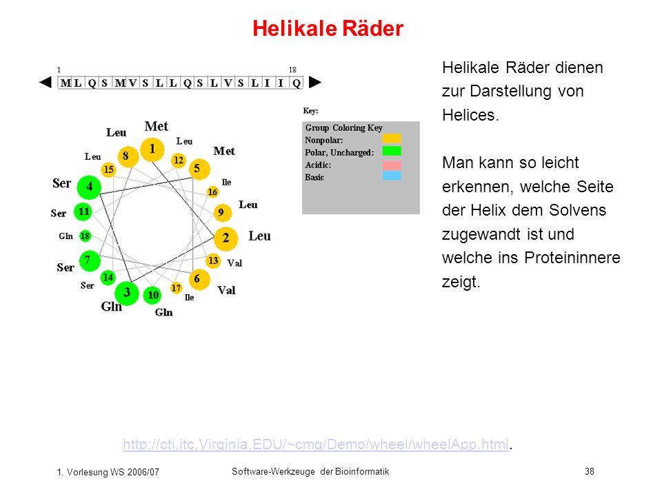 1. Vorlesung WS 2006/07 Software-Werkzeuge der Bioinformatik38 Helikale Räder http://cti.itc.Virginia.EDU/~cmg/Demo/wheel/wheelApp.htmlhttp://cti.itc.