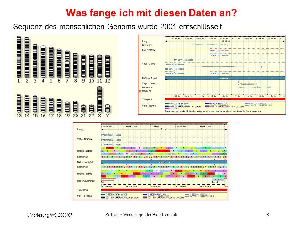 1. Vorlesung WS 2006/07 Software-Werkzeuge der Bioinformatik8 Was fange ich mit diesen Daten an? Sequenz des menschlichen Genoms wurde 2001 entschlüss