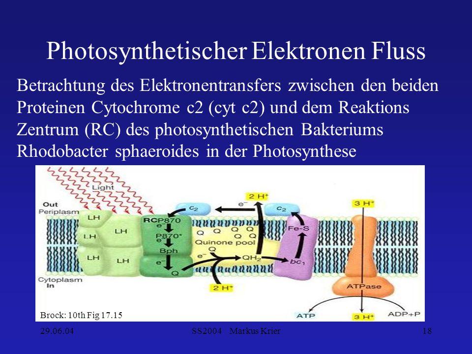 29.06.04SS2004 Markus Krier18 Photosynthetischer Elektronen Fluss Brock: 10th Fig 17.15 Betrachtung des Elektronentransfers zwischen den beiden Protei