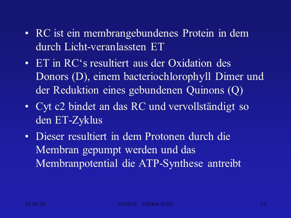 29.06.04SS2004 Markus Krier19 RC ist ein membrangebundenes Protein in dem durch Licht-veranlassten ET ET in RCs resultiert aus der Oxidation des Donor