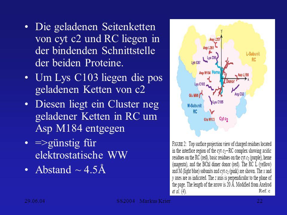 29.06.04SS2004 Markus Krier22 Die geladenen Seitenketten von cyt c2 und RC liegen in der bindenden Schnittstelle der beiden Proteine. Um Lys C103 lieg