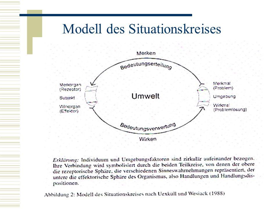 Modell des Situationskreises