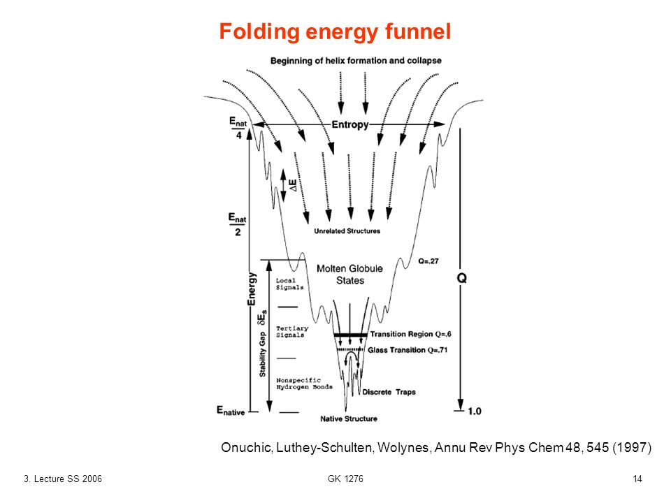143. Lecture SS 2006 GK 1276 Folding energy funnel Onuchic, Luthey-Schulten, Wolynes, Annu Rev Phys Chem 48, 545 (1997)